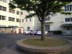 駐車場-2