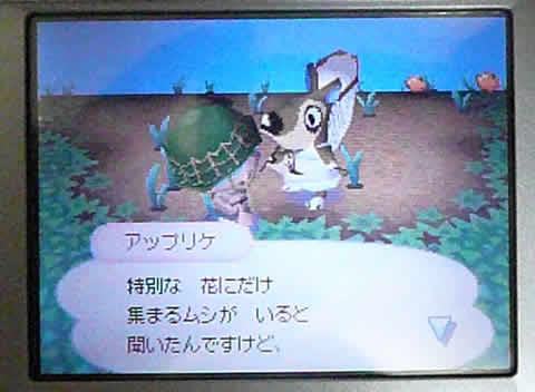 おいでよどうぶつの森-004