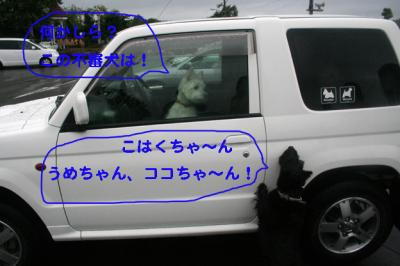 06093001.jpg