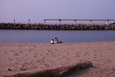 海で親子1