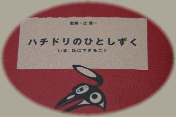 20061013184308.jpg