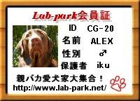 20061116185014.jpg