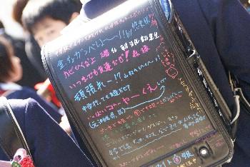 20070320223500.jpg
