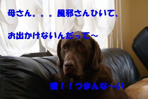 kasan5.jpg