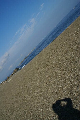 sikoku46.jpg