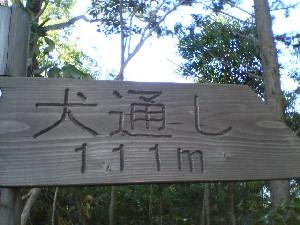 yama10.jpg
