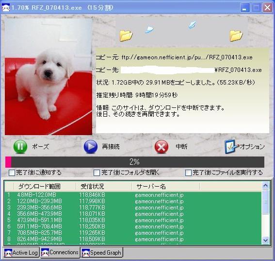 DCsakura.jpg