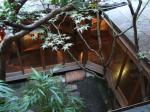 2階から見た坪庭