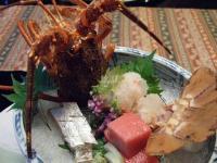 koshinosato0118.jpg