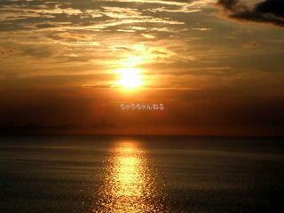 tsuki0259.jpg