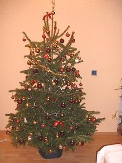 去年のクリスマスツリー