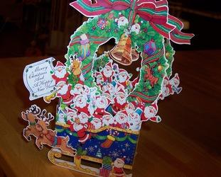 クリスマスカードが届きました