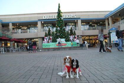 クリスマスツリーに前で。。。②