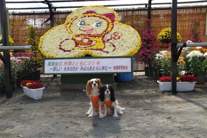 チャコ&エリーも記念に撮らせていただきました