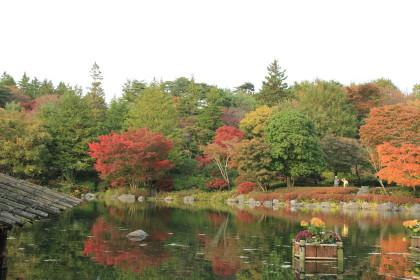 日本庭園⑨
