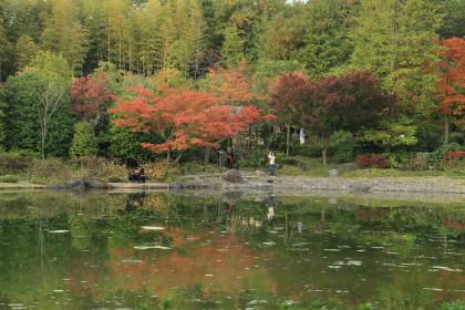 日本庭園⑩
