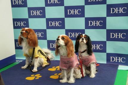 DHCブース「ワンちゃん撮影会」