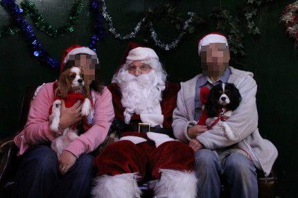 サンタさんと一緒に。。。