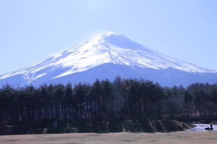 富士山の見える原っぱ