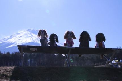 富士山をバックに集合写真