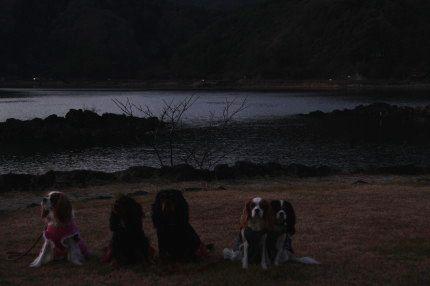 河口湖の湖畔にて・・・
