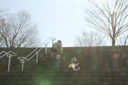 階段を上るチャコパパとチャコ&エリー