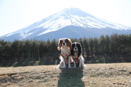 富士山をバックにハイ、ポーズ!!