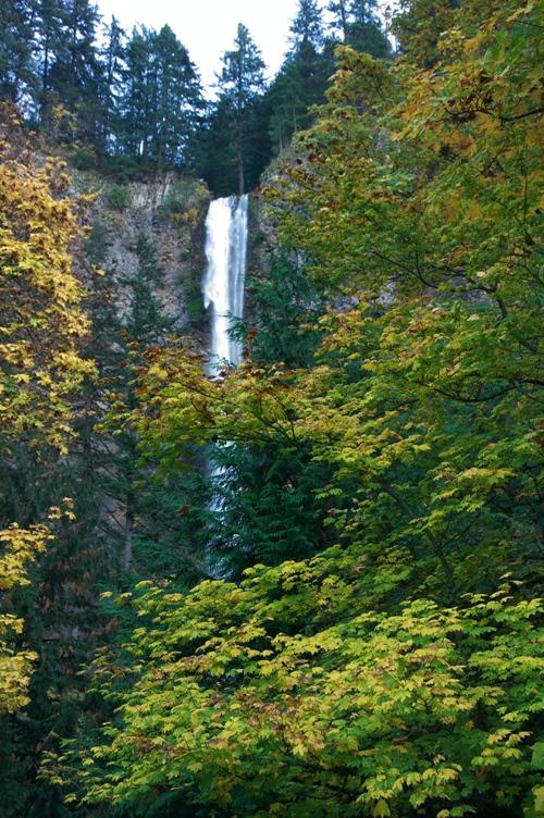 マルトノマの滝 in 2009秋 4