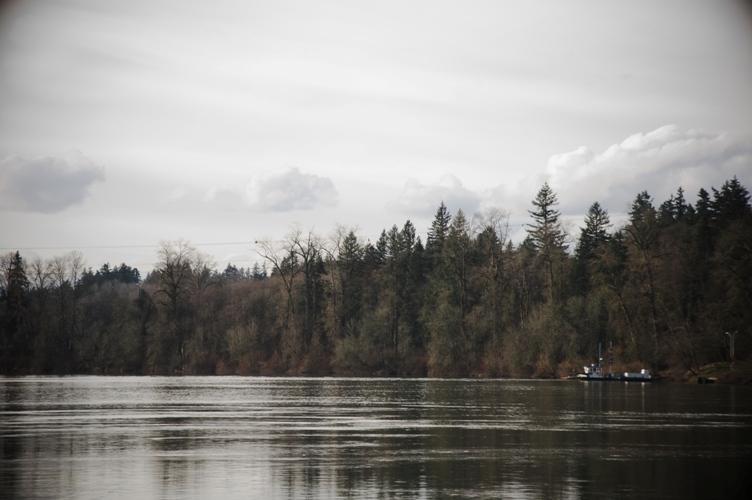 Willamette river 2