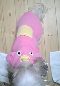 nene2007-12-41.jpg