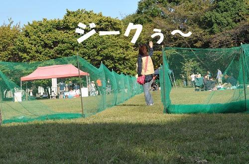 DSC_2094.jpg