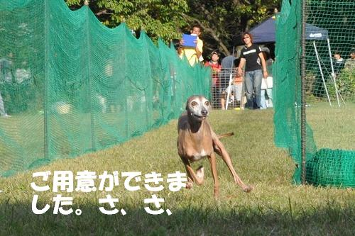 DSC_2102.jpg