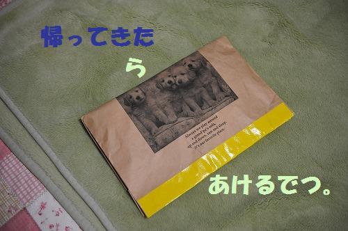 DSC_7469.jpg