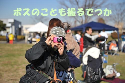 DSC_8011.jpg