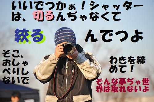 DSC_8287.jpg