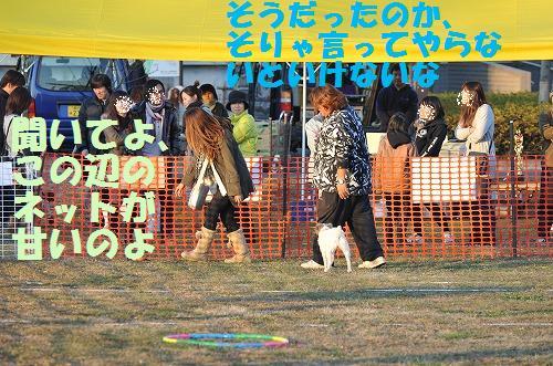 DSC_8324.jpg