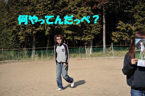 DSC_9577.jpg