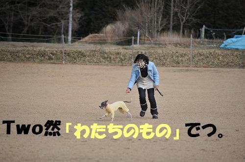 DSC_9623.jpg