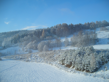From the train to Bratislava