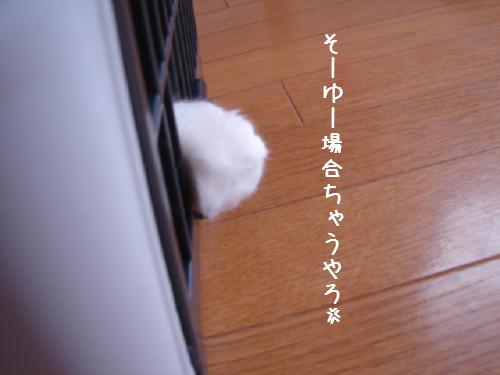 030714.jpg