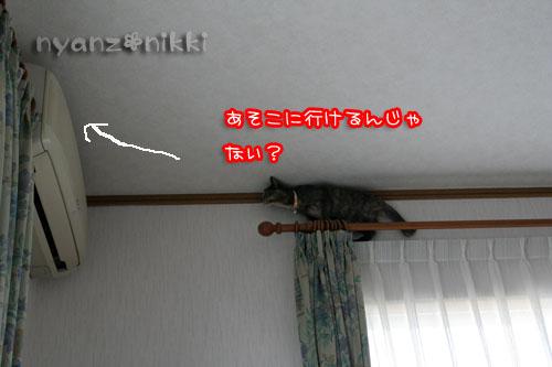 07101104.jpg