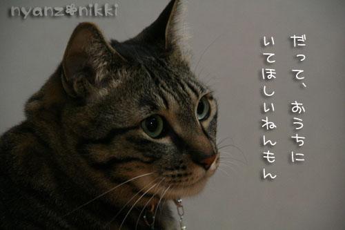 IMG_05993.jpg