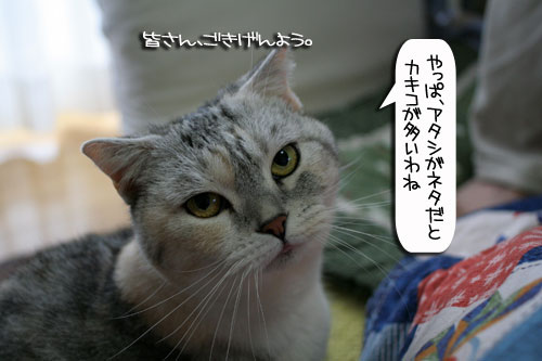 IMG_2985.jpg