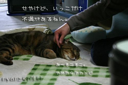 IMG_3111.jpg
