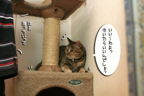 IMG_3424.jpg