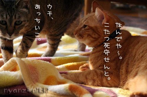 IMG_3792.jpg