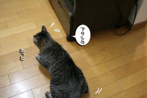 IMG_5349.jpg