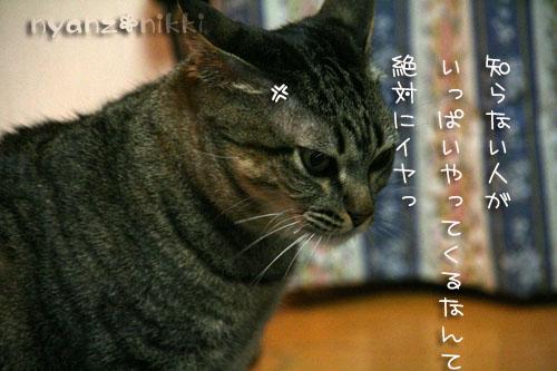 IMG_5485.jpg
