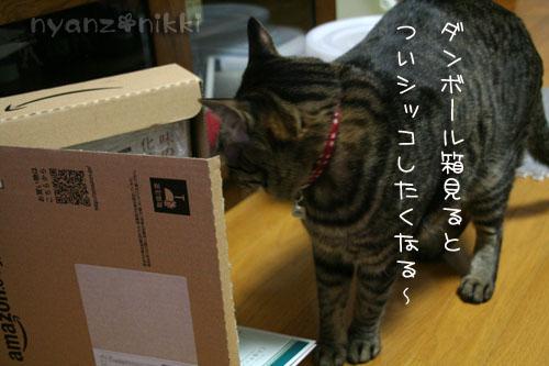 IMG_5639.jpg