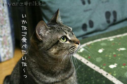 IMG_6147.jpg
